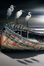 Preview iPhone wallpaper Birds and boat, sea, creative design