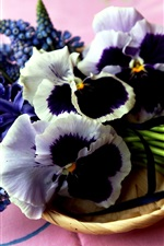 Preview iPhone wallpaper Blue hyacinth and muscari pansies