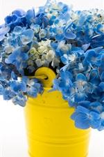 Blue hydrangea, bouquet, yellow bucket, white background