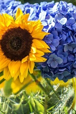 Preview iPhone wallpaper Blue hydrangeas and sunflowers
