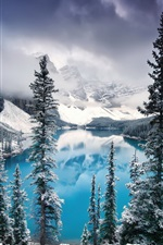 Preview iPhone wallpaper Canada, Banff National Park, lake, trees, mountains, snow, winter