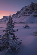 Preview iPhone wallpaper Canada, Banff National Park, snow, mountains, trees, winter, night