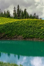 Preview iPhone wallpaper Canada, British Columbia, Chilliwack, Spoon Lake, mountains, trees, green