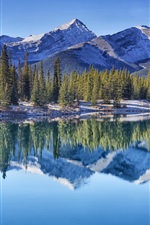 Preview iPhone wallpaper Canadian Rockies, Forget-me-not Pond, trees, mountains, water reflection