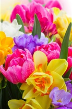 Preview iPhone wallpaper Colorful flowers, daffodils, tulips, freesia