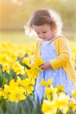 Cute little girl, yellow daffodils fields
