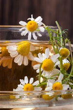 Preview iPhone wallpaper Daisy tea, white flowers