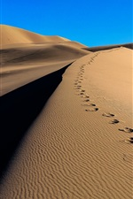 Preview iPhone wallpaper Desert, sands, traces, dunes