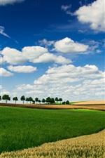 Fazenda, campos, céu, nuvens