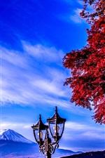 Preview iPhone wallpaper Fuji Mount, lamp, trees, autumn