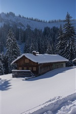 Preview iPhone wallpaper Germany, Bavaria, Allgau Alps, snow, trees, house