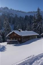 Germany, Bavaria, Allgau Alps, snow, trees, house
