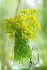 Glass cup, yellow rapeseed flowers, green background