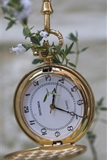 Preview iPhone wallpaper Gold pocket watch