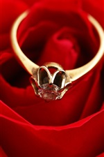 Preview iPhone wallpaper Gold ring, diamond, red rose