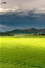 Preview iPhone wallpaper Green fields, trees, sky, clouds, summer