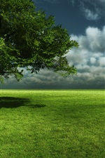 Preview iPhone wallpaper Green meadow, tree, sky, clouds
