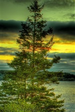 Preview iPhone wallpaper Lake, trees, stones, clouds, sunset, HDR style
