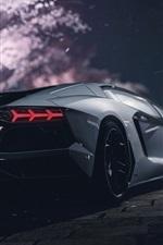 Lamborghini supercar rear view, night