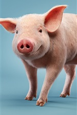 Preview iPhone wallpaper Little pig, blue background