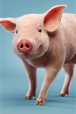 미리보기 iPhone 배경 화면 작은 돼지, 파란색 배경