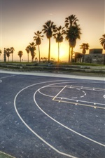 Preview iPhone wallpaper Los Angeles, basketball ground, tree, sunset