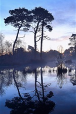 Preview iPhone wallpaper Morning, trees, lake, water reflection, fog