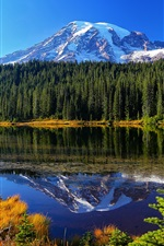 Preview iPhone wallpaper Mount Rainier National Park, lake, trees, mountains, water reflection, USA