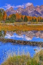 Mountains, forest, grass, river, autumn