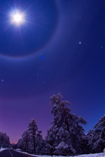 Preview iPhone wallpaper Night, moon, sky, road, trees, snow, winter