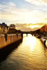 Notre Dame, Paris, France, trees, river, morning, sunrise