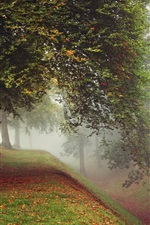 Preview iPhone wallpaper Park, trees, fog, autumn