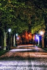 미리보기 iPhone 배경 화면 폴란드, 제스, 밤, 골목, 나무, 조명, 공원