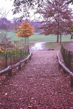 Preview iPhone wallpaper Prospect Park, New York, path, fence, leaves, trees, autumn, USA