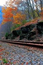 Railway, trees, stones, autumn