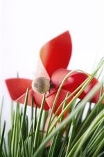 Preview iPhone wallpaper Red toy windmill, grass, white background