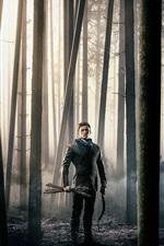 Preview iPhone wallpaper Robin Hood: Origins, 2018 movie