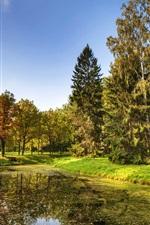 Preview iPhone wallpaper Saint Petersburg, park, trees, grass, river, autumn, Russia
