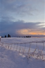 Preview iPhone wallpaper Snow, road, fence, sunset, winter