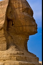 Preview iPhone wallpaper Sphinx sculpture, Egypt