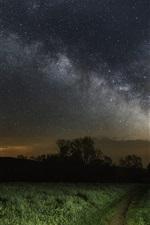 iPhone обои Звездный, трава, ночь, путь