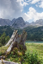 Preview iPhone wallpaper Stump, river, mountains, clouds, sky, grass, bushes