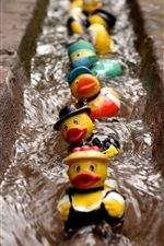 Preview iPhone wallpaper Toy ducks swim in water