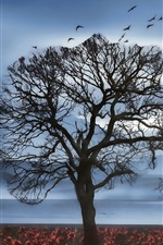 Preview iPhone wallpaper Tree, sky, birds, swing, girl, silhouette, flowers