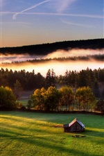 Preview iPhone wallpaper Trees, field, house, fog, morning