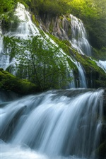 Preview iPhone wallpaper USA, Panther Creek Falls, beautiful nature landscape, waterfalls, forest