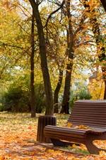 Preview iPhone wallpaper Ukraine, Cherkassy, park, autumn, bench, trees, leaves