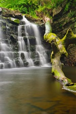 Preview iPhone wallpaper Waterfall, water, tree, rocks