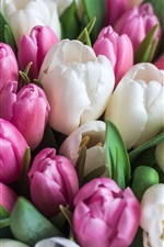 Preview iPhone wallpaper White and pink tulips, flowers, bouquet