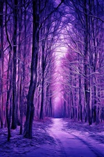 Winter, forest, snow, purple style, art